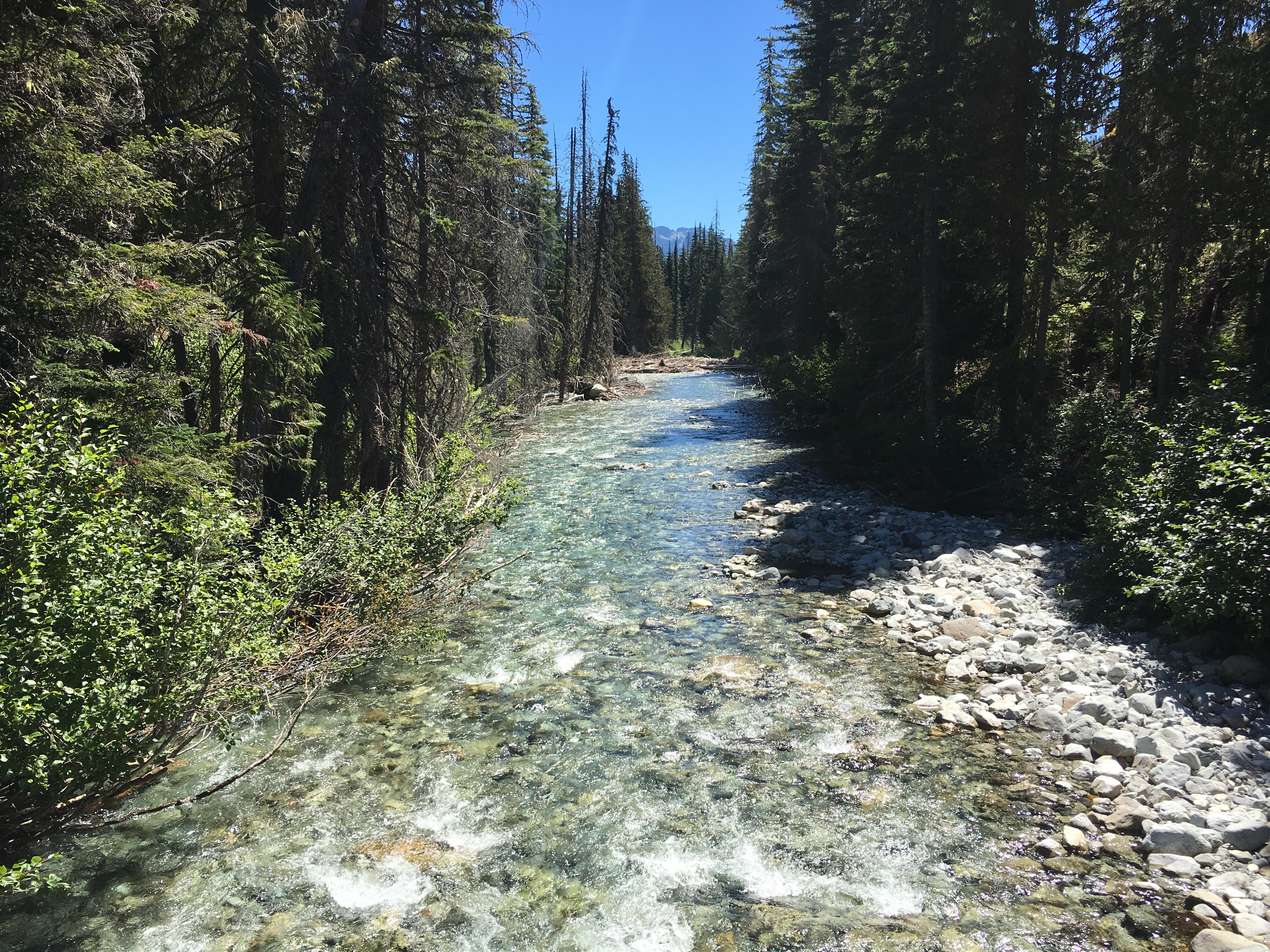 One of many stream crossings on Stevens Pass to Snoqualmie Pass adventure