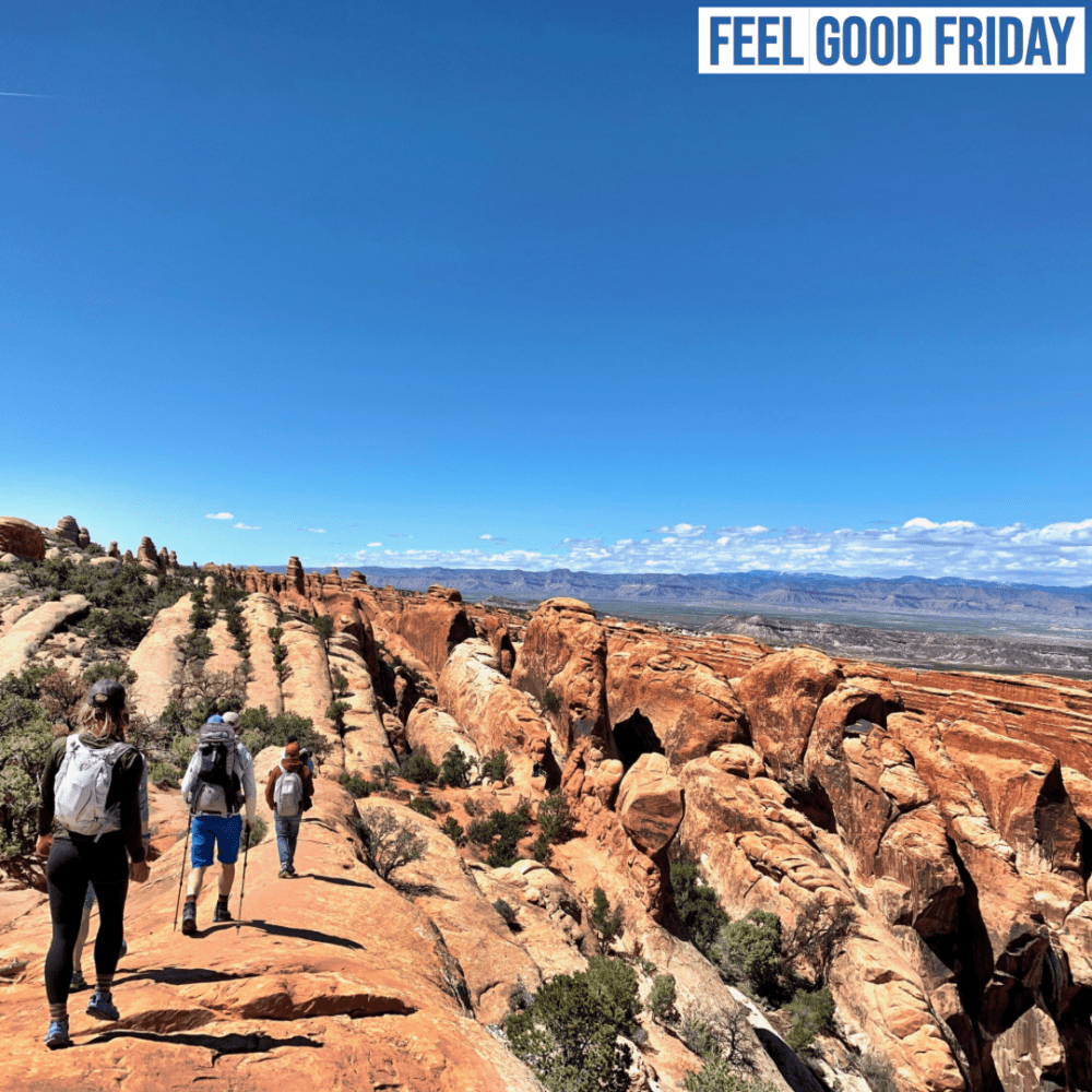 Feel Good Friday – Educated – Pretzel Rolls – Fiery Furnace