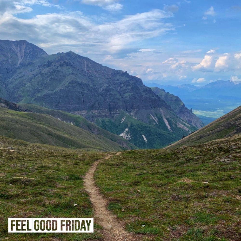 Feel Good Friday - Iron Cowboy - Blueberries - Wrangell St. Elias