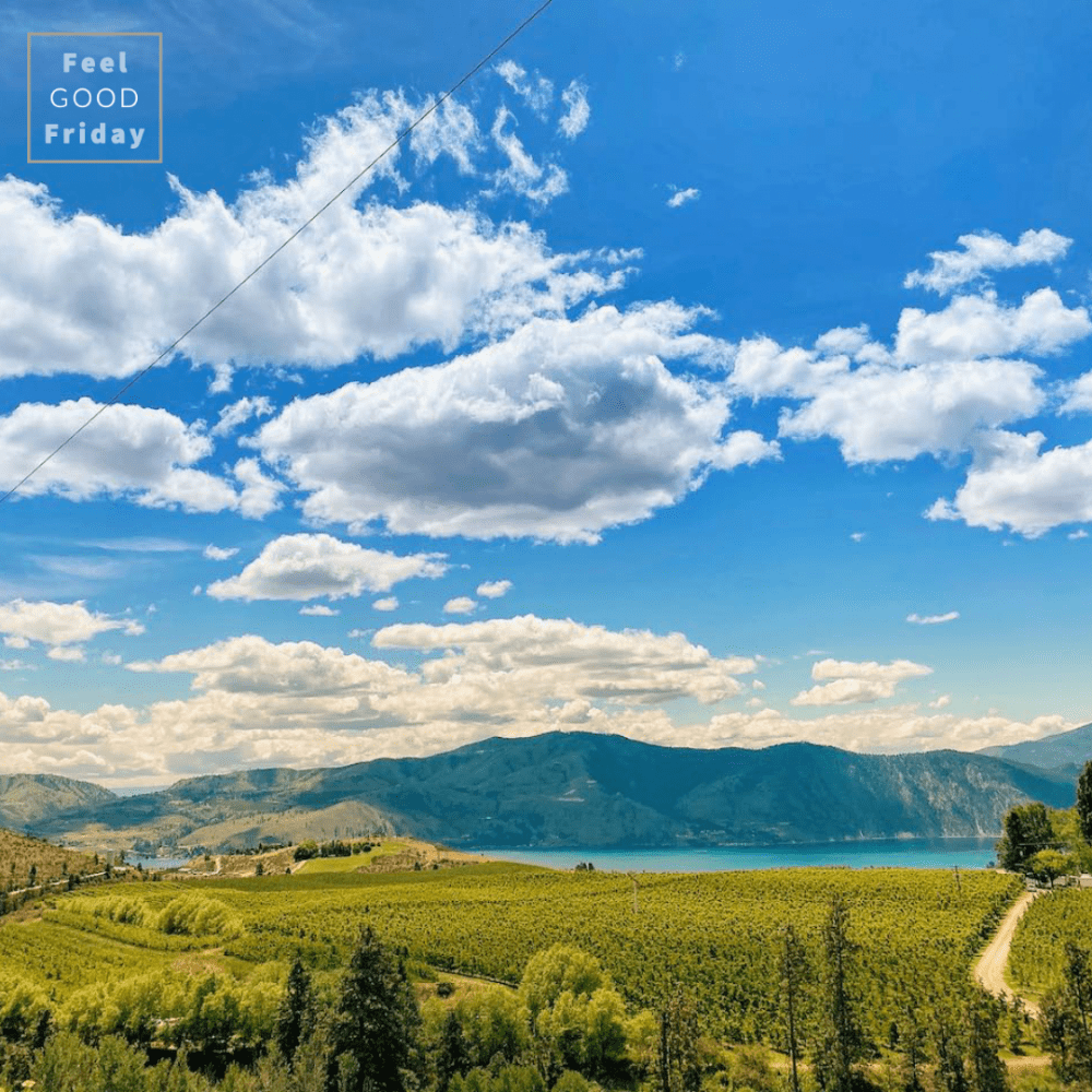 A beautiful view of Lake Chelan and orchards